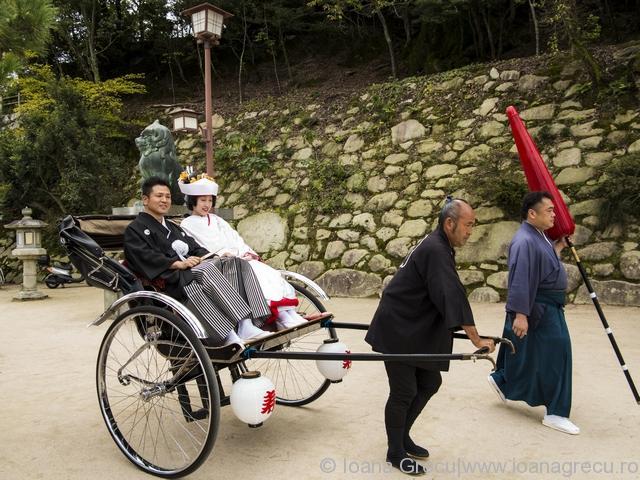 http://www.dreamstime.com/stock-image-traditional-japanese-wedding-couple-miyajima-island-image35101311